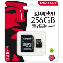 MICRO SD 256GB KINGSTON CLASSE 10 CON ADATTATORE