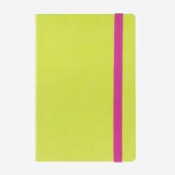 MYNOTEBOOK LEGAMI TACCUINI MEDIUM A RIGHE VERDE